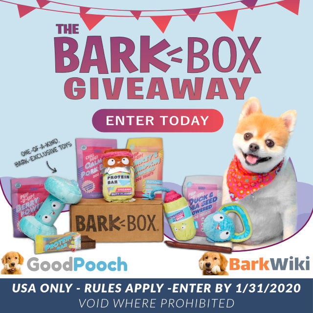Bark Box Giveaway 12 month subscription to BarkBox.com Giveaway Image