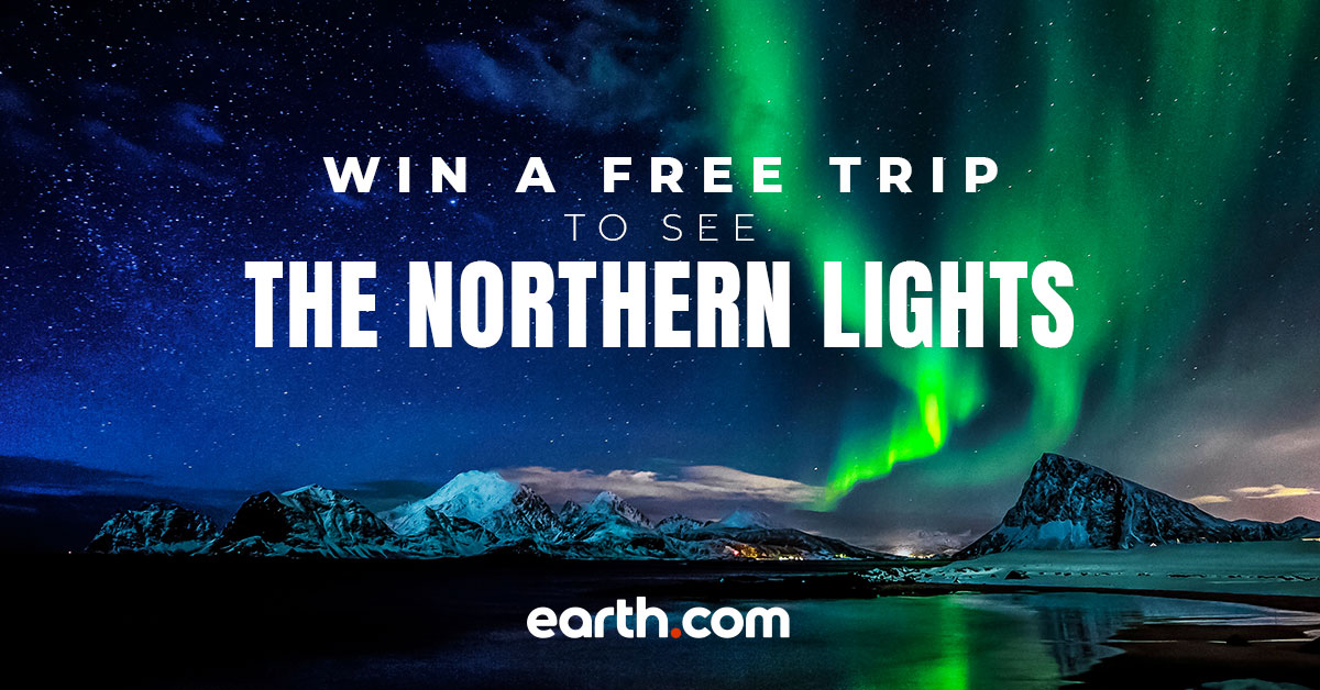 Win a free trip to Iceland and see the Northern Lights with Earth.com!