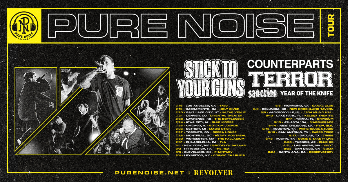 Pure Noise Tour - Win a VIP Bundle which includes tickets to a show, t-shirts from each band and more. Giveaway Image